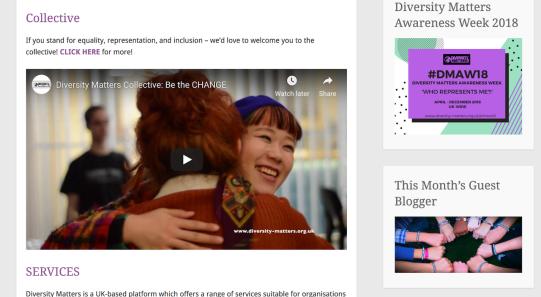 Diversity Matters web1